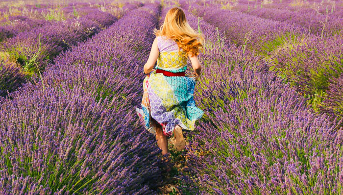 Young woman in a colorful dress jumps through rows of lavender in the South of France.